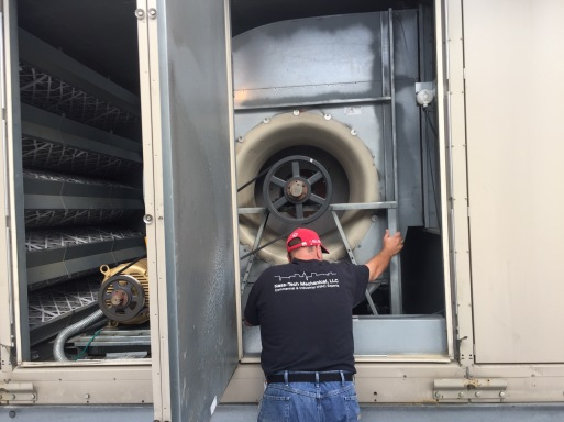 Isolator inspection